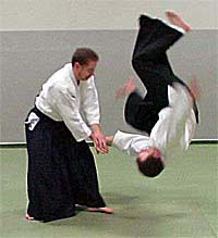 *Aikido from Japan